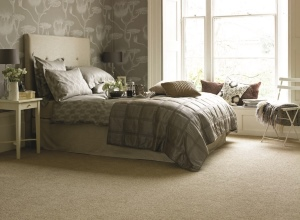 Carpets - More Than Beds, Bangor